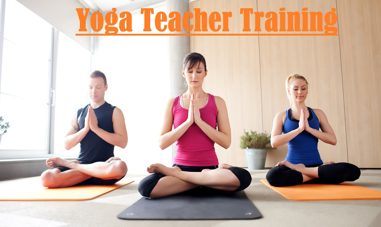 Yoga Teacher Training, Yoga Certificate course, Yoga Teacher Training Level 2