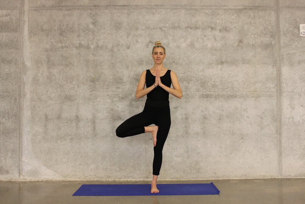 Best Online Yoga Course in Hisar